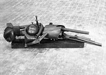 Fallen Warrior – 1960
